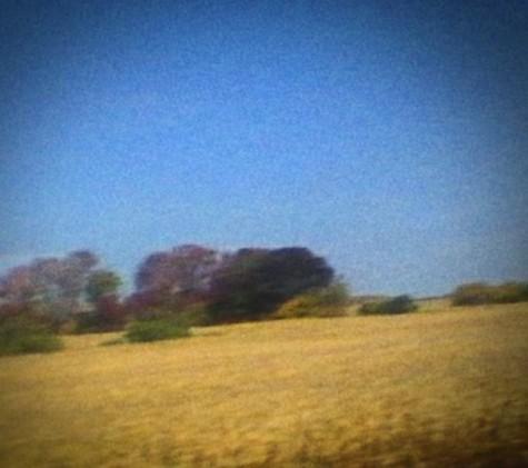 Sun Kil Moon's cover of 'Benji'. Caldo Verde Records
