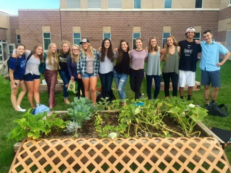 Meet Monarch's New Club: The Green Team